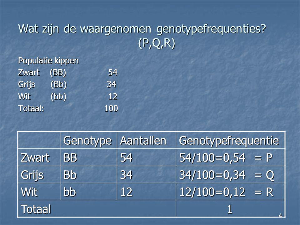 Wat zijn de waargenomen genotypefrequenties (P,Q,R)
