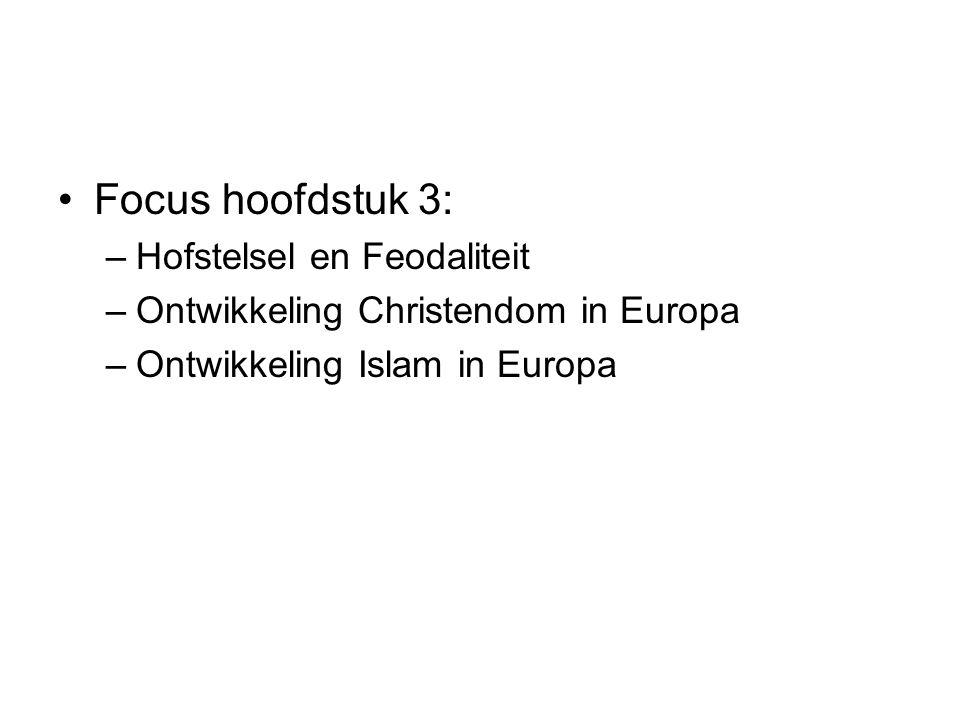 Focus hoofdstuk 3: Hofstelsel en Feodaliteit