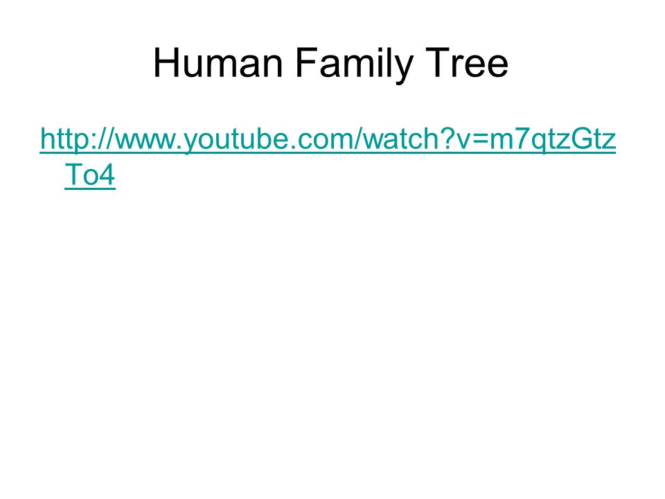 Human Family Tree http://www.youtube.com/watch v=m7qtzGtz To4