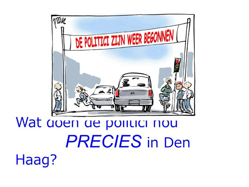 Wat doen de politici nou PRECIES in Den Haag