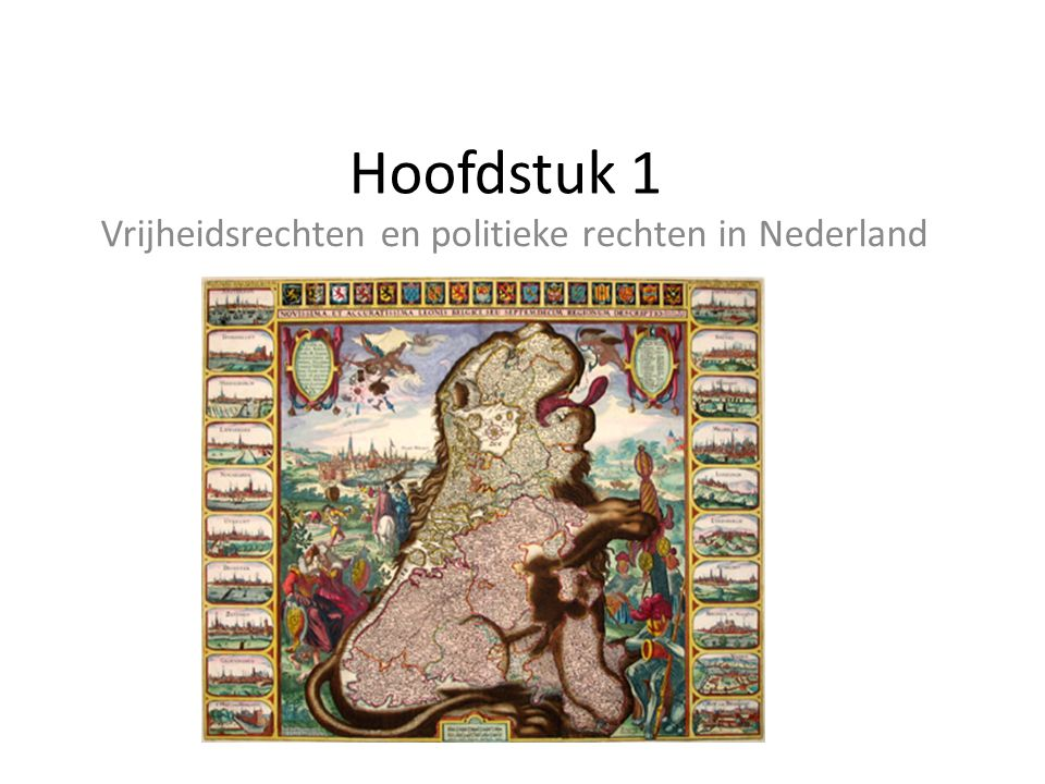 Vrijheidsrechten en politieke rechten in Nederland