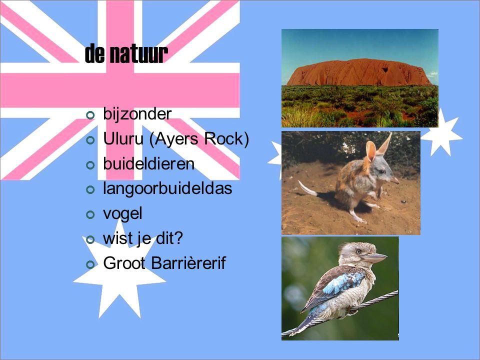 de natuur bijzonder Uluru (Ayers Rock) buideldieren langoorbuideldas