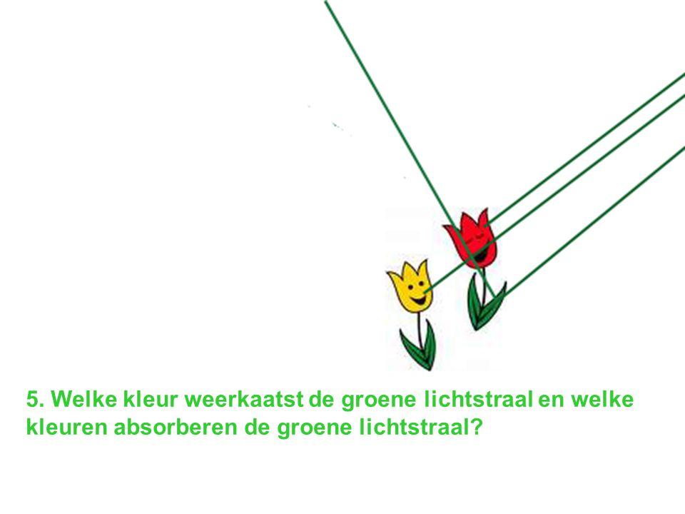 5. Welke kleur weerkaatst de groene lichtstraal en welke kleuren absorberen de groene lichtstraal