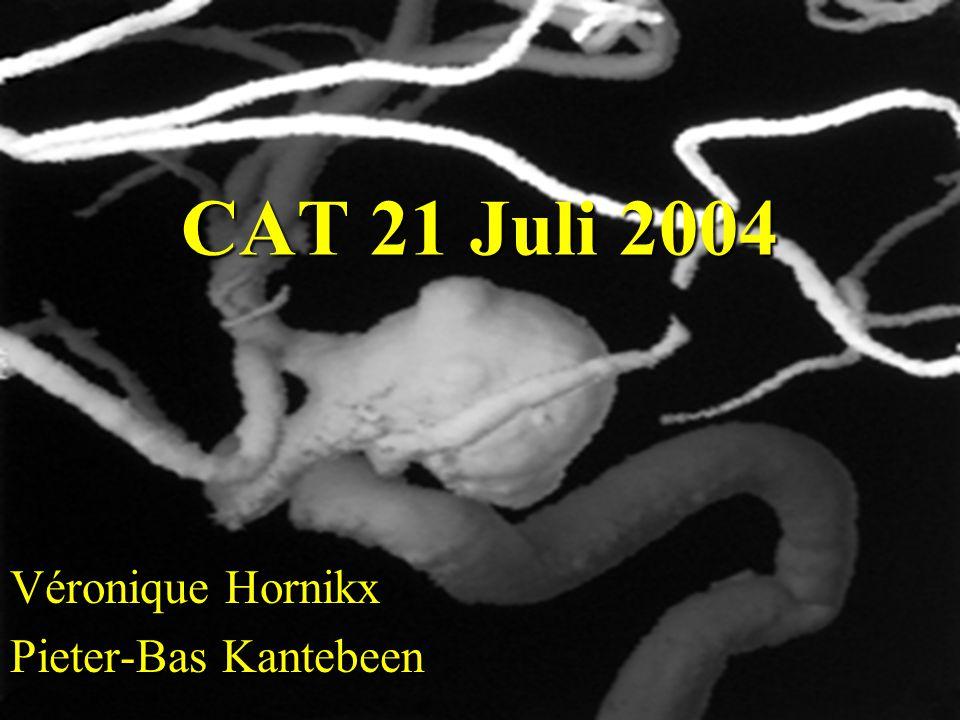 Véronique Hornikx Pieter-Bas Kantebeen