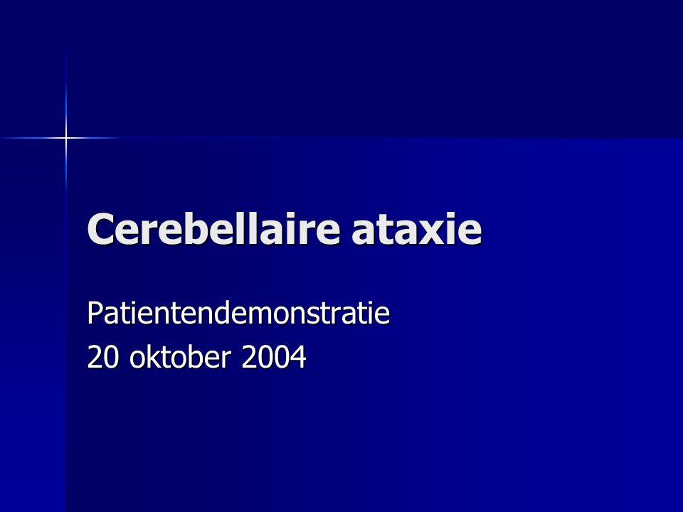 Patientendemonstratie 20 oktober 2004