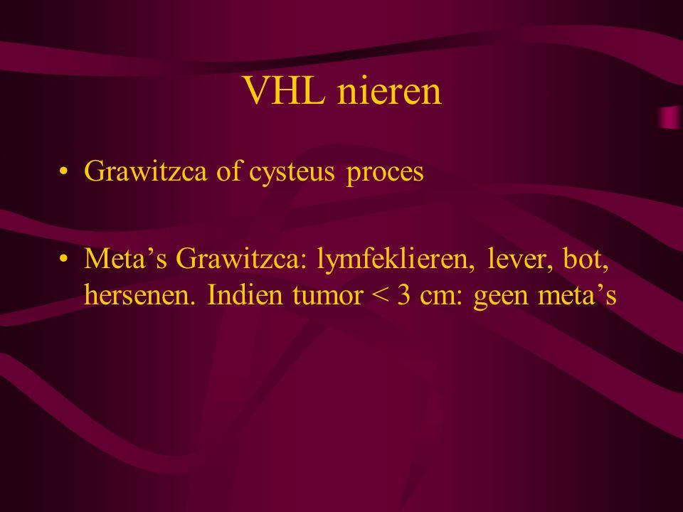 VHL nieren Grawitzca of cysteus proces