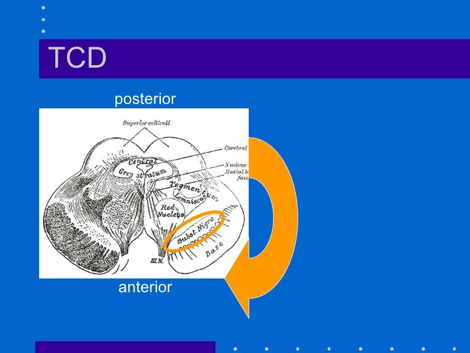 TCD posterior anterior