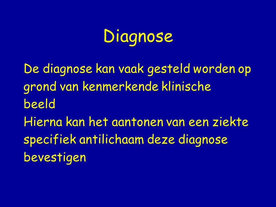 Diagnose De diagnose kan vaak gesteld worden op