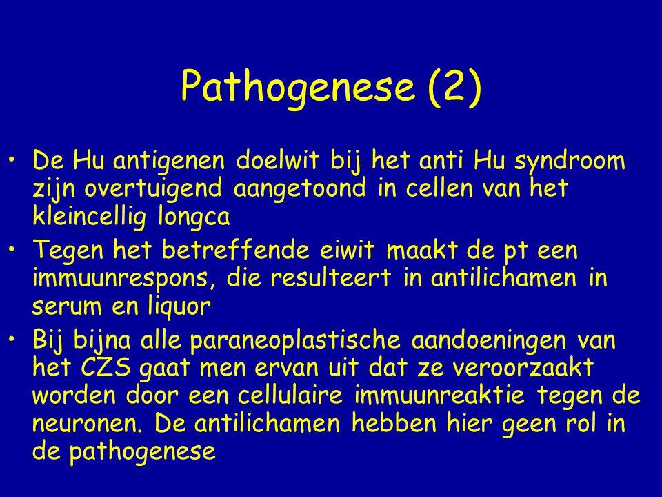 Pathogenese (2) De Hu antigenen doelwit bij het anti Hu syndroom zijn overtuigend aangetoond in cellen van het kleincellig longca.