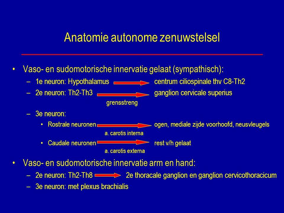 Anatomie autonome zenuwstelsel