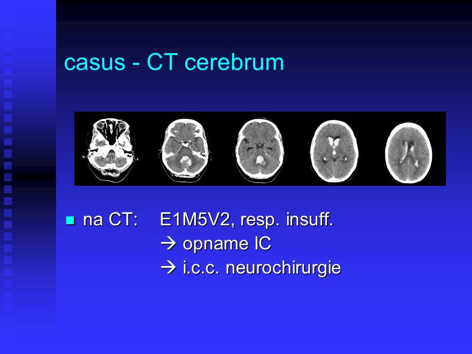 casus - CT cerebrum na CT: E1M5V2, resp. insuff.  opname IC