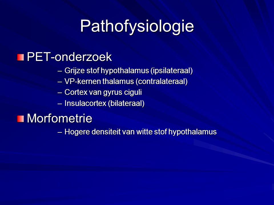 Pathofysiologie PET-onderzoek Morfometrie