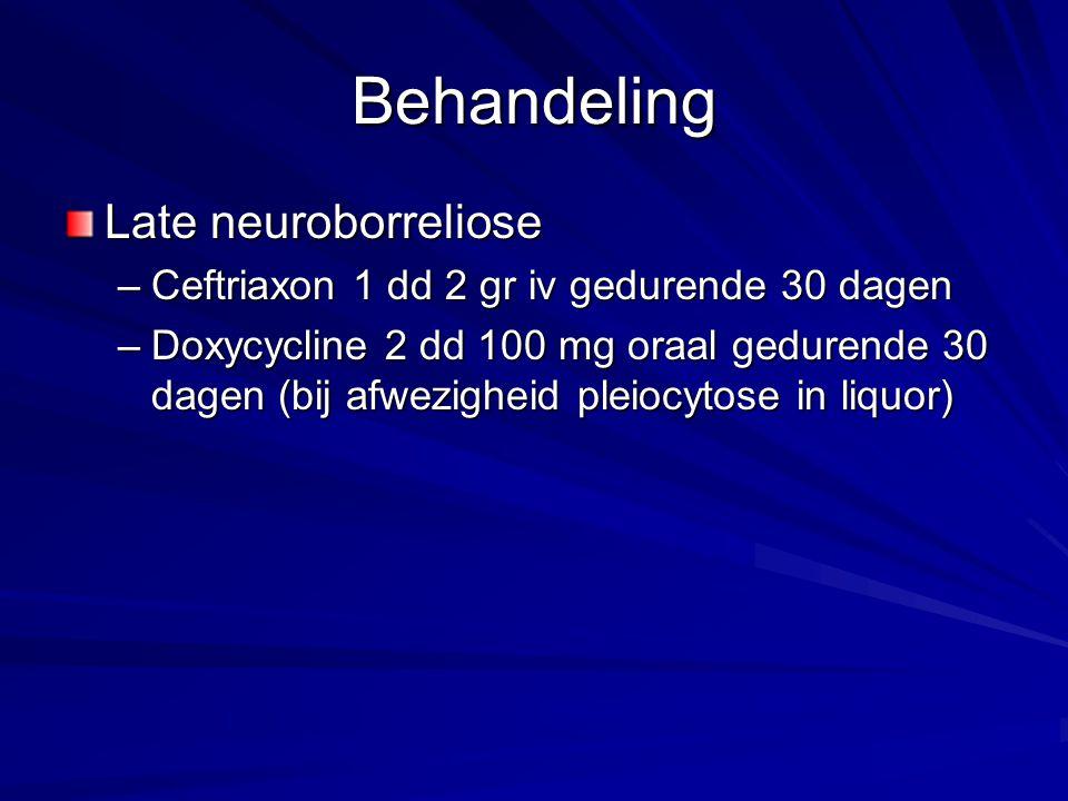 Behandeling Late neuroborreliose