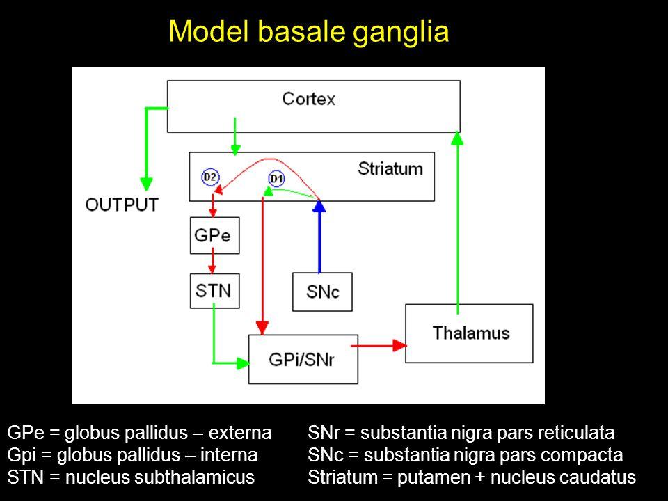 Model basale ganglia GPe = globus pallidus – externa