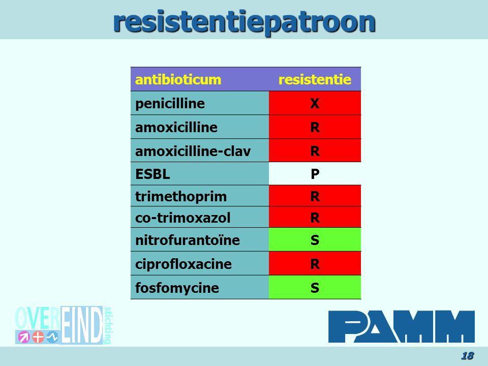 resistentiepatroon antibioticum resistentie penicilline X amoxicilline