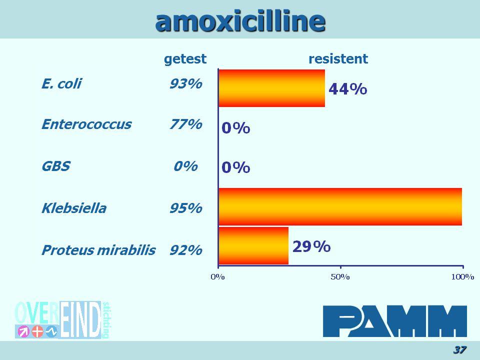 amoxicilline getest resistent E. coli Enterococcus GBS Klebsiella