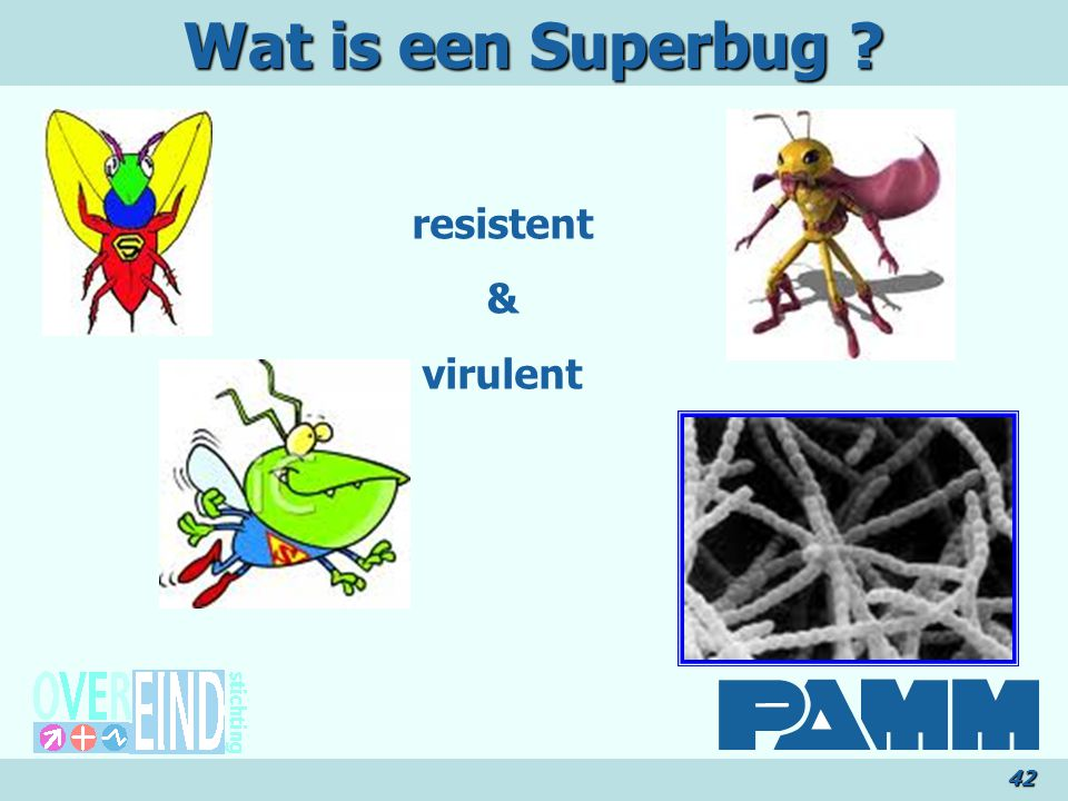 Wat is een Superbug resistent & virulent 42