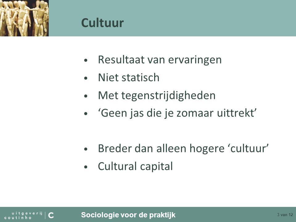 Cultuur Resultaat van ervaringen Niet statisch Met tegenstrijdigheden