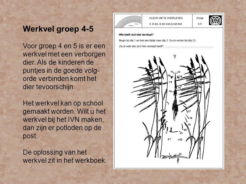 Werkvel groep 4-5
