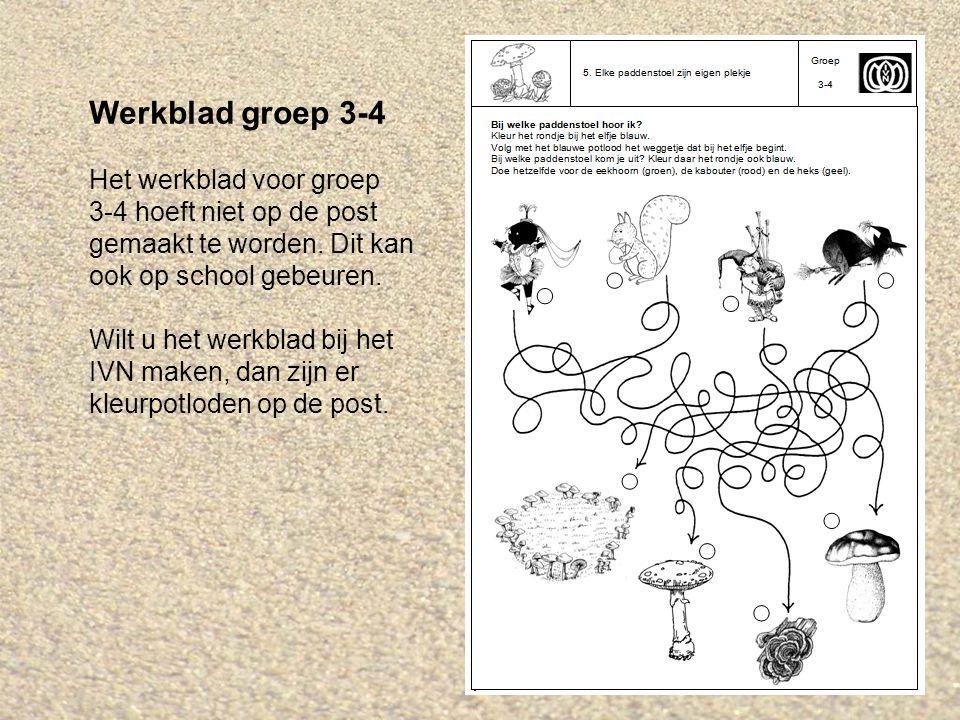 Werkblad groep 3-4