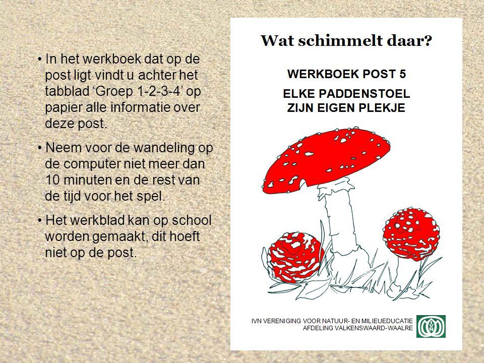 Elke paddenstoel zijn eigen plekje ppt download - Werkblad eindigen ...