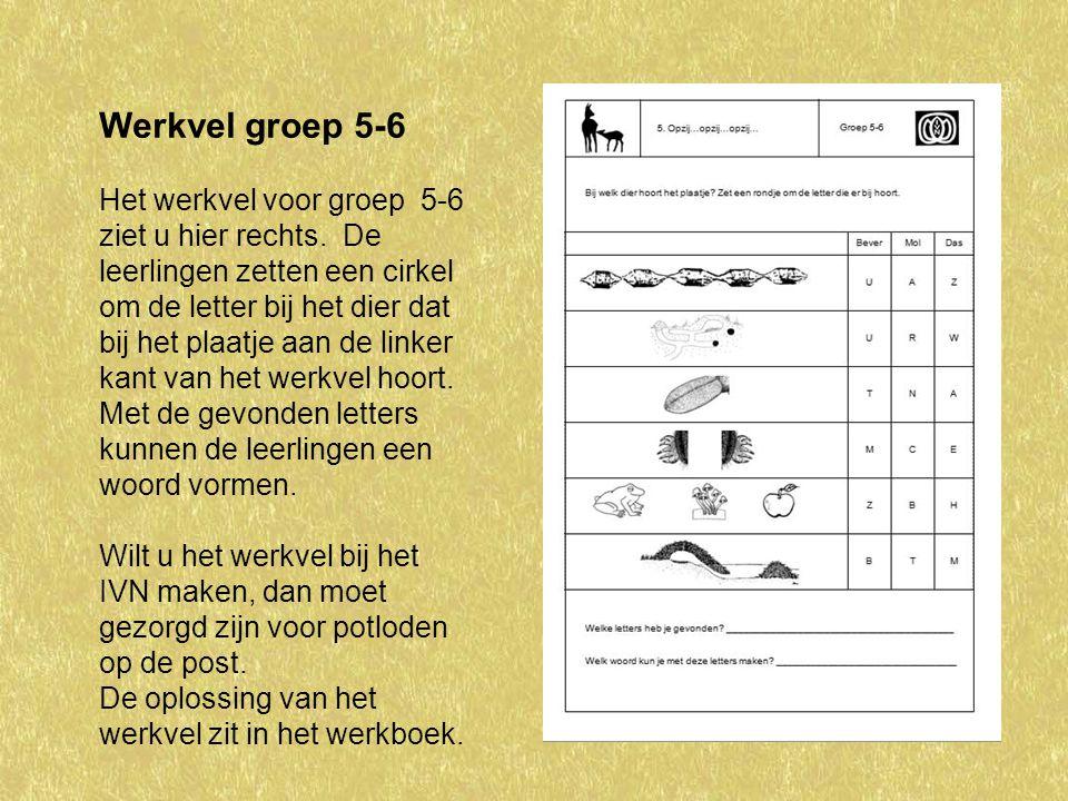 Werkvel groep 5-6