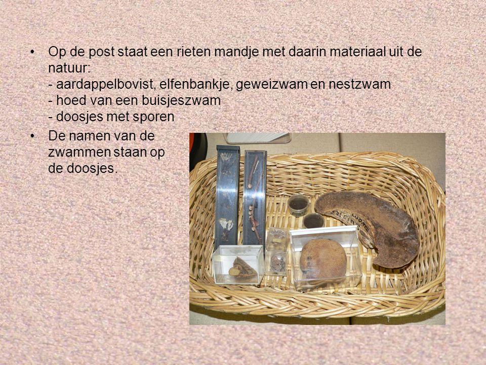 Op de post staat een rieten mandje met daarin materiaal uit de natuur: - aardappelbovist, elfenbankje, geweizwam en nestzwam - hoed van een buisjeszwam - doosjes met sporen