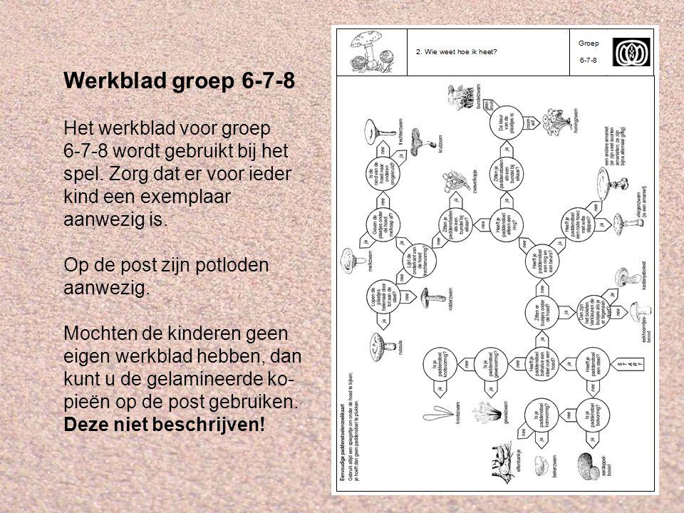 Werkblad groep 6-7-8 Het werkblad voor groep 6-7-8 wordt gebruikt bij het spel. Zorg dat er voor ieder kind een exemplaar aanwezig is.