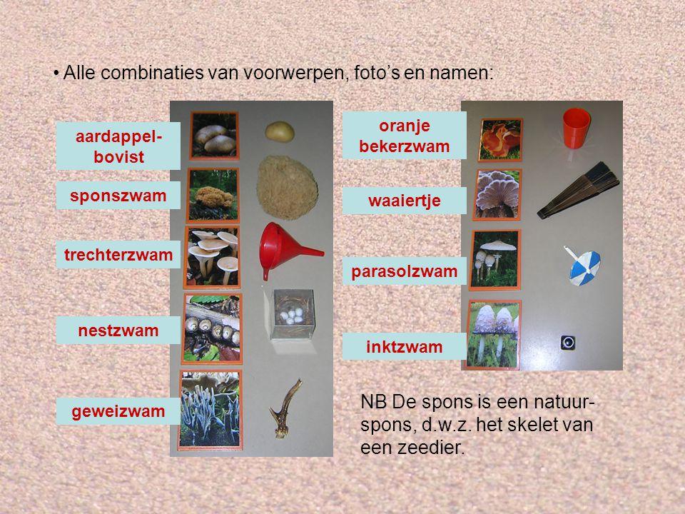 Alle combinaties van voorwerpen, foto's en namen: