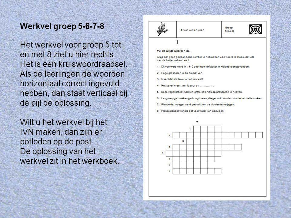 Werkvel groep 5-6-7-8