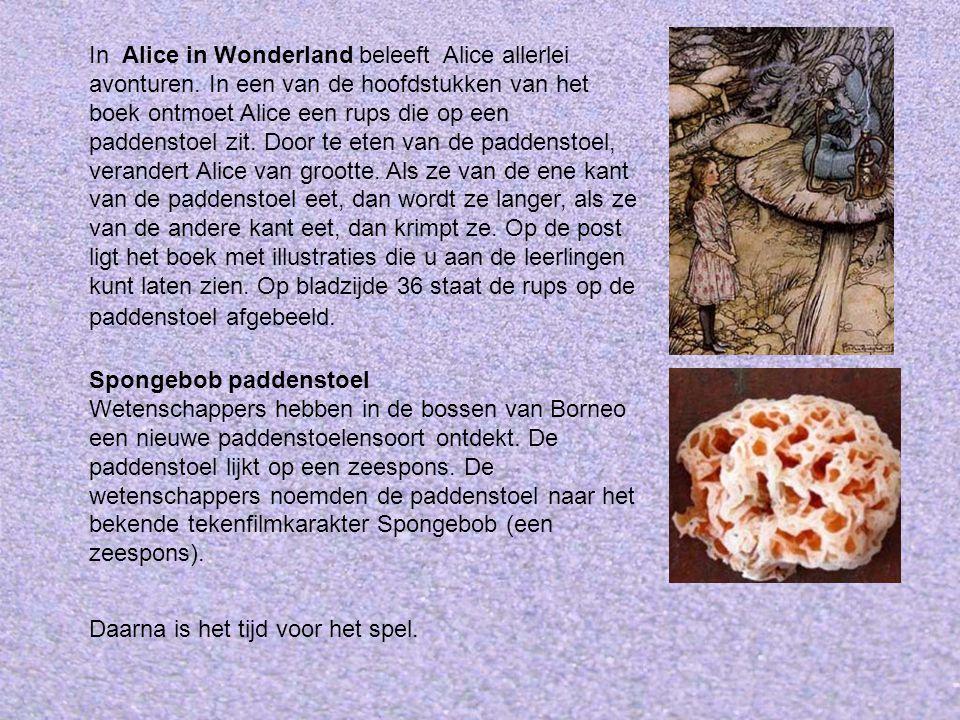 In Alice in Wonderland beleeft Alice allerlei avonturen