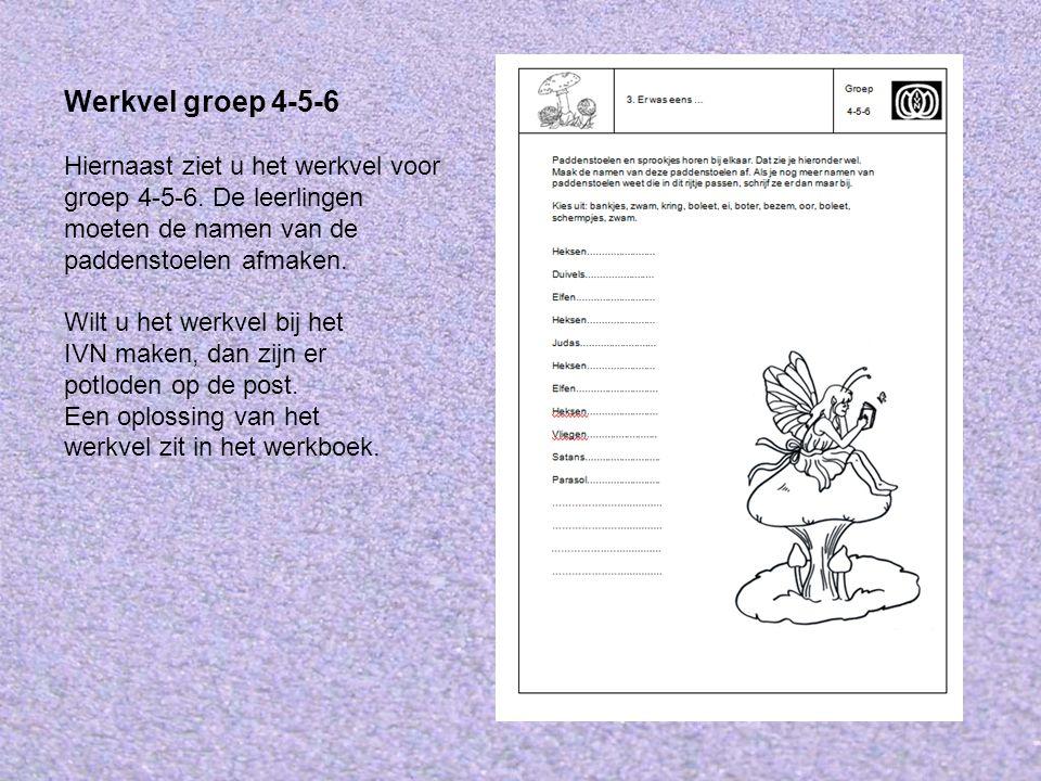 Werkvel groep 4-5-6 Hiernaast ziet u het werkvel voor groep 4-5-6. De leerlingen moeten de namen van de paddenstoelen afmaken.