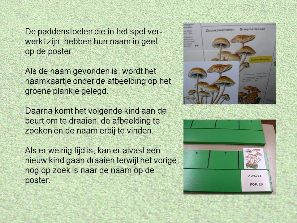 De paddenstoelen die in het spel ver- werkt zijn, hebben hun naam in geel op de poster.