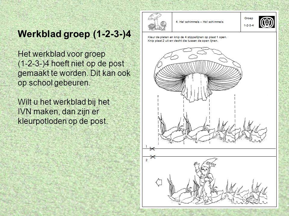 Werkblad groep (1-2-3-)4