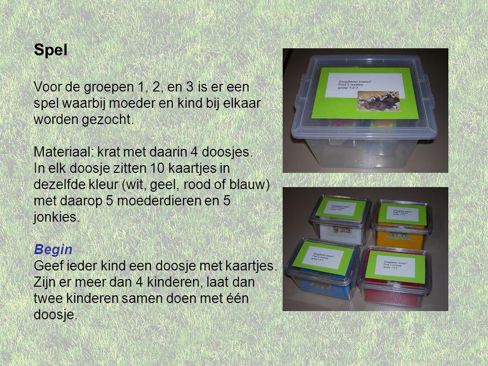 Spel Voor de groepen 1, 2, en 3 is er een spel waarbij moeder en kind bij elkaar worden gezocht. Materiaal: krat met daarin 4 doosjes.