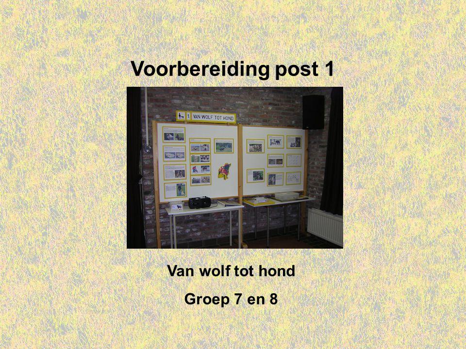 Voorbereiding post 1 Van wolf tot hond Groep 7 en 8