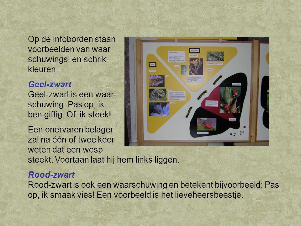 Op de infoborden staan voorbeelden van waar- schuwings- en schrik- kleuren.