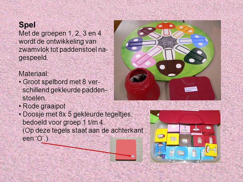 Spel Met de groepen 1, 2, 3 en 4 wordt de ontwikkeling van zwamvlok tot paddenstoel na- gespeeld.