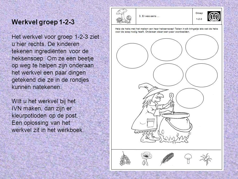 Werkvel groep 1-2-3