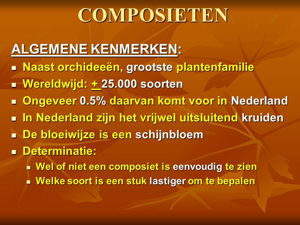 COMPOSIETEN ALGEMENE KENMERKEN: