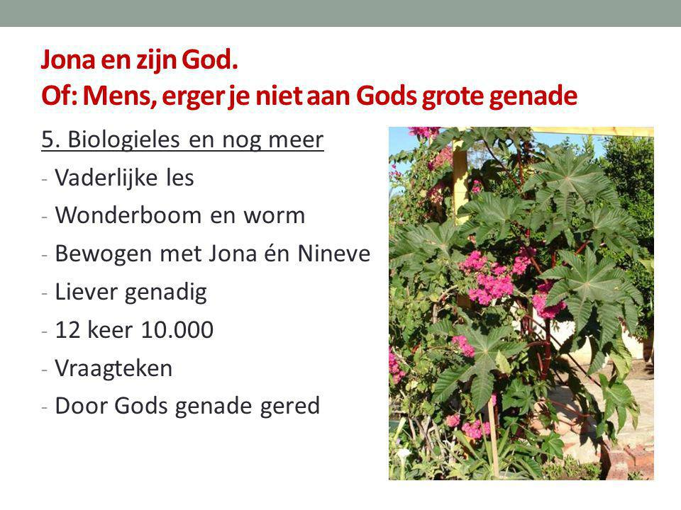 Jona en zijn God. Of: Mens, erger je niet aan Gods grote genade