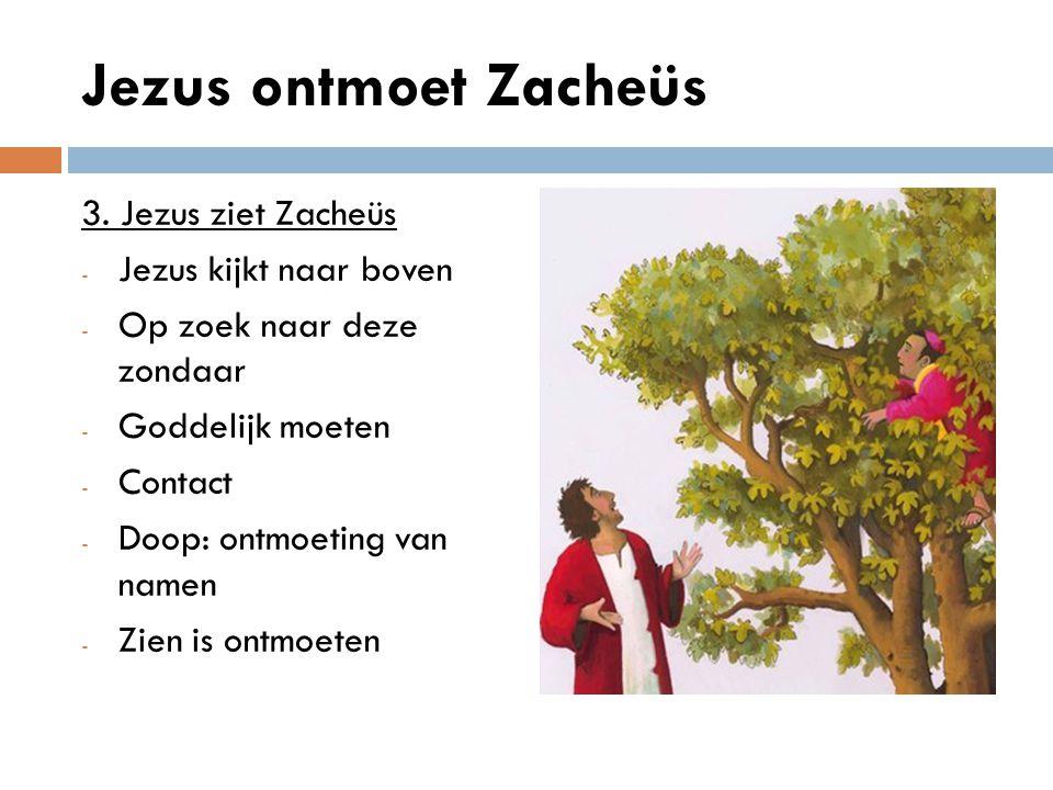 Jezus ontmoet Zacheüs 3. Jezus ziet Zacheüs Jezus kijkt naar boven