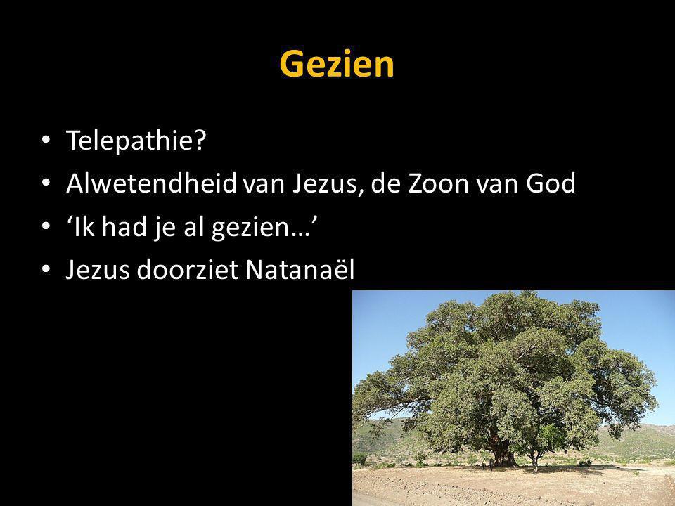 Gezien Telepathie Alwetendheid van Jezus, de Zoon van God