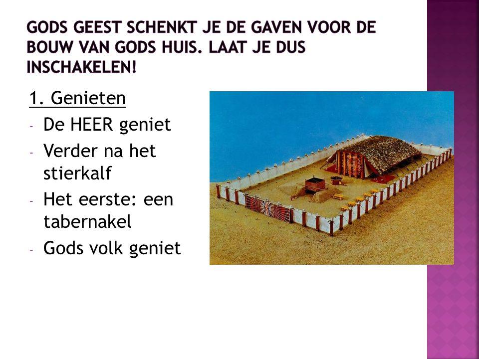 Verder na het stierkalf Het eerste: een tabernakel Gods volk geniet