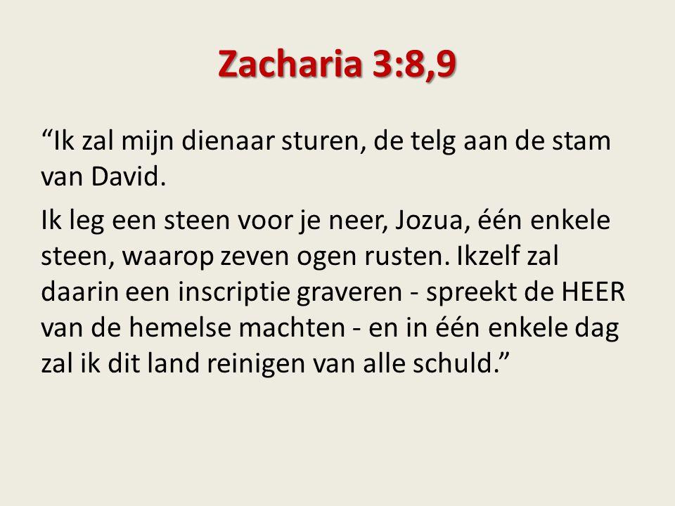 Zacharia 3:8,9 Ik zal mijn dienaar sturen, de telg aan de stam van David.