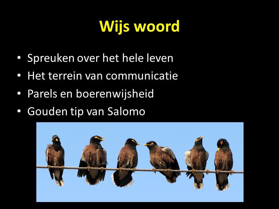Wijs woord Spreuken over het hele leven Het terrein van communicatie