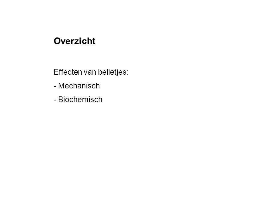 Overzicht Effecten van belletjes: Mechanisch - Biochemisch