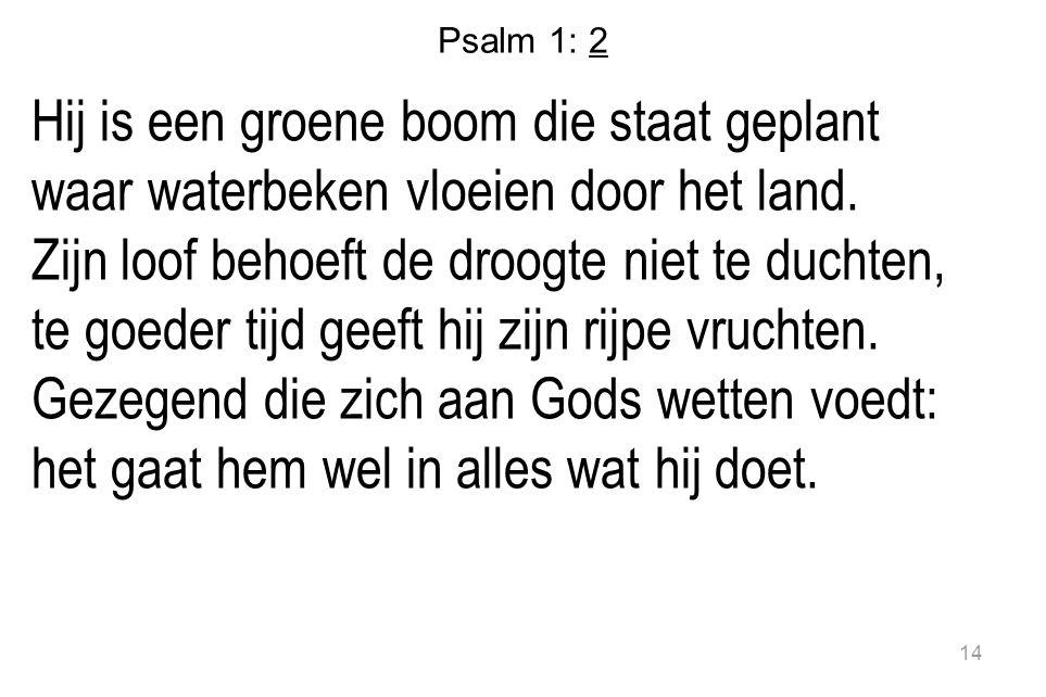 Psalm 1: 2