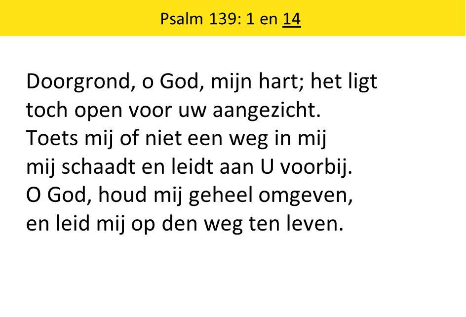 Doorgrond, o God, mijn hart; het ligt toch open voor uw aangezicht.