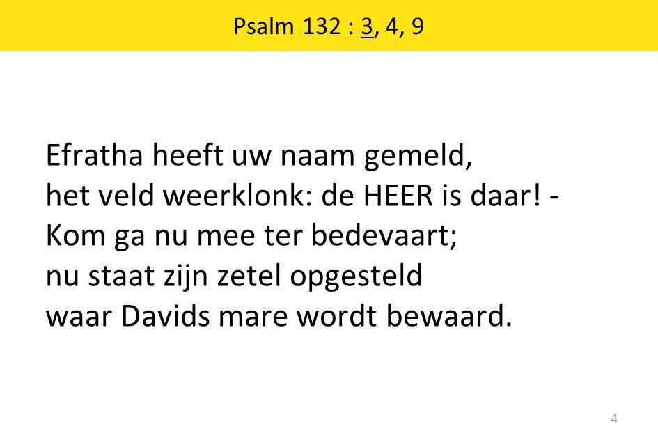 Psalm 132 : 3, 4, 9